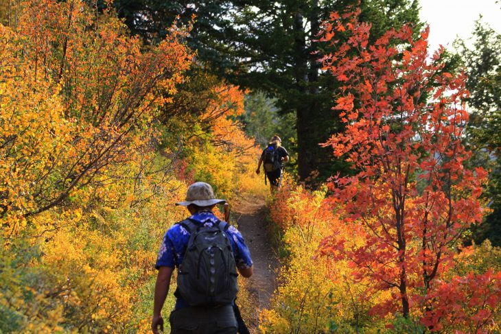 "Toamna se numara bobocii si ""pretextele"" pentru o iesire la munte – 3 Motive sa mergi in drumetie daca te doboara stresul"