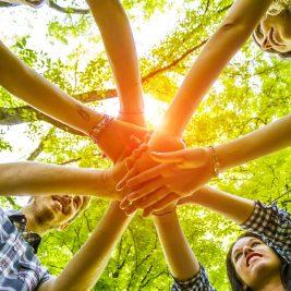 Activitati de team building in aer liber – Consolidarea colectivului