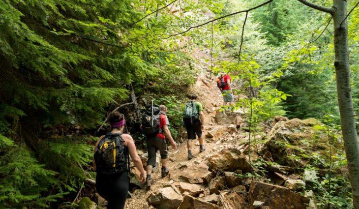 Despre hiking – Prezentare