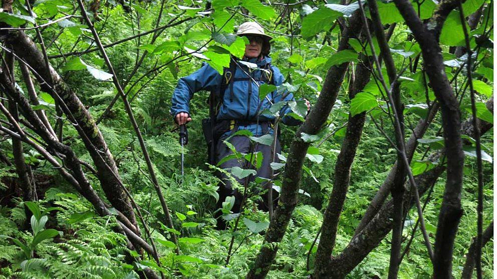 bete de trekking pentru eliberarea potecilor
