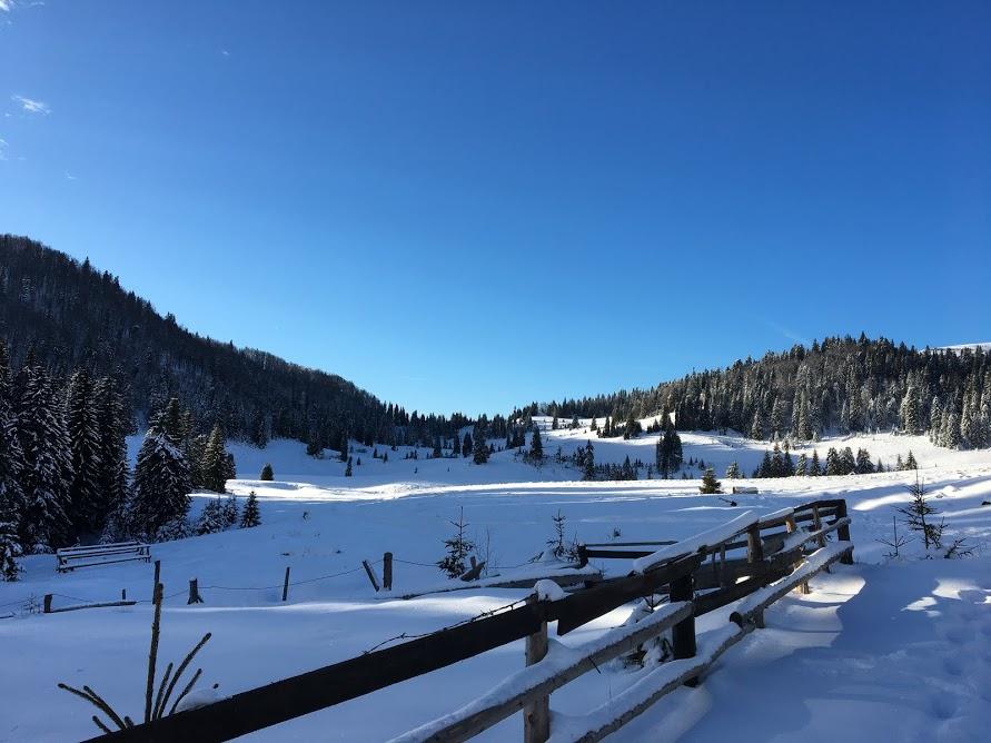 invataminte sa iubesti iarna