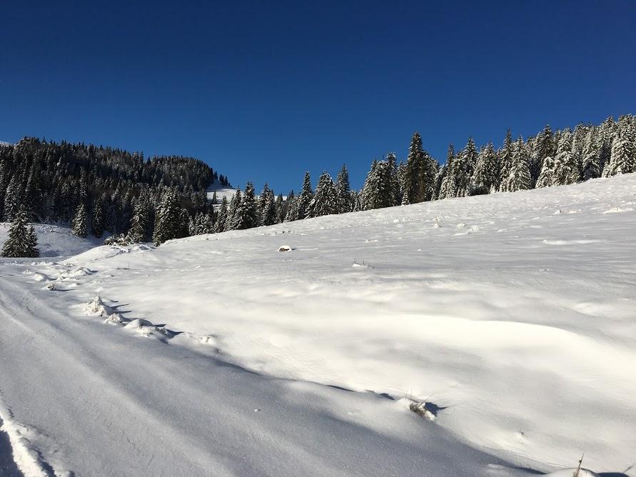 panorama splendida - zona padis