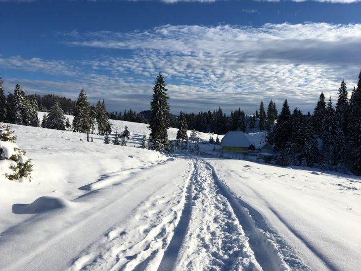 cum sa iubesti iarna - traseu platorul padis