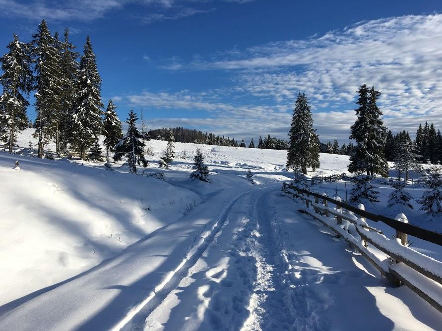 cum sa iubesti iarna - drumetie prin padis