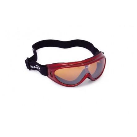 Ochelari de ski Rebell Dallmont 1527