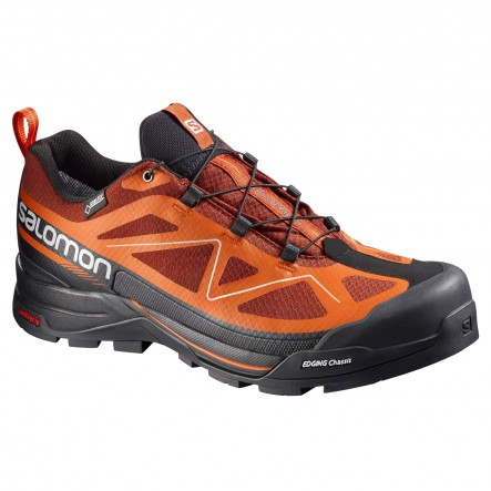 Ghete munte Salomon X Alp Move GTX