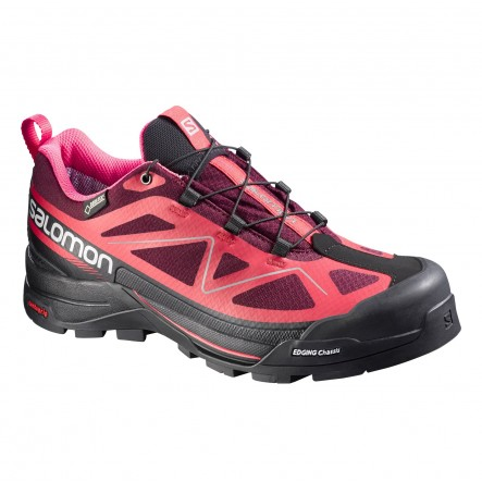Ghete munte Salomon X Alp Move GTX W