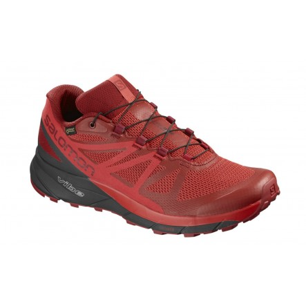 Pantofi alergare Salomon Sense Ride Gore-Tex Invisible Fit