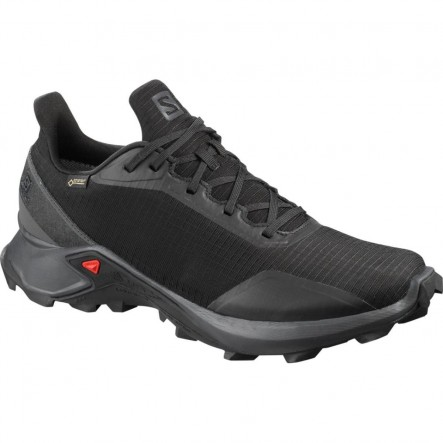 Pantofi alergare Salomon ALPHACROSS GTX - Negru