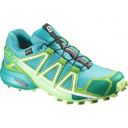 Pantofi alergare Salomon Speedcross 4 Gore-Tex