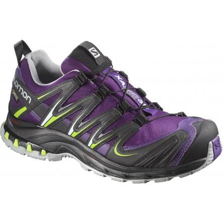 Pantofi alergare Salomon XA Pro 3D GTX W